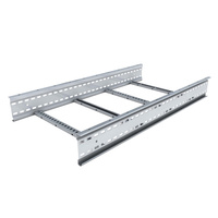 Cable Tray Ladders