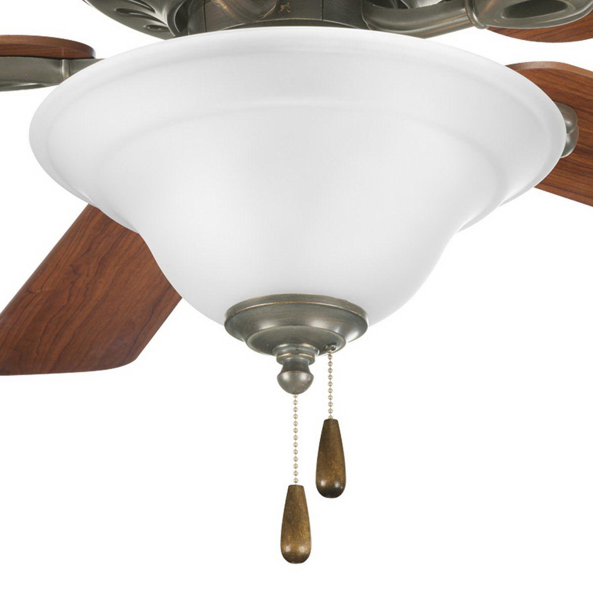 Lighting P2628 20 Ceiling Fan Light Kit