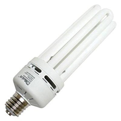 Maxlite SKQ100EA250 Multi Tube Compact Fluorescent Lamp 100 Watt E39 Mogul Base 6900 Lumens 84 CRI 5000K Close Daylight HighMax