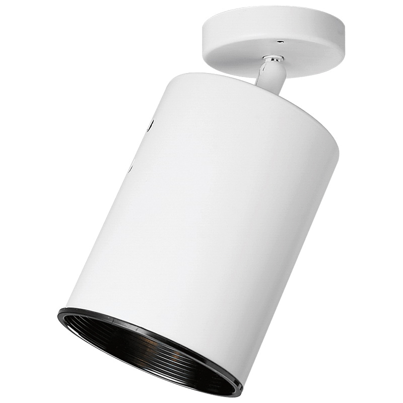 Progress Lighting P6397 30 Multi Directional Heat Lamp 250 Watt 120 Volt White Painted Track