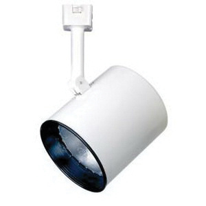 Contech Lighting Ctl2130 P Line Voltage Compact Flat Back