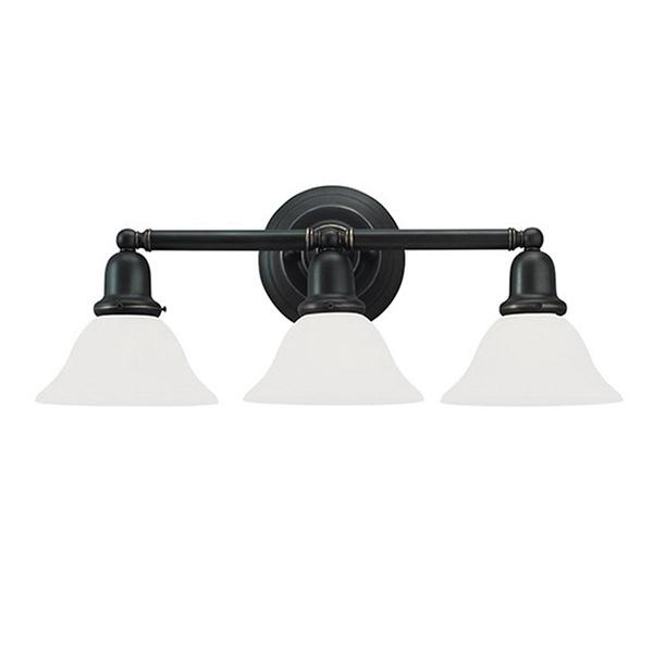 Sea Gull Lighting 44062 782 3 Light Transitional Bath Fixture 100 Watt 120 Volt Heirloom Bronze Sus