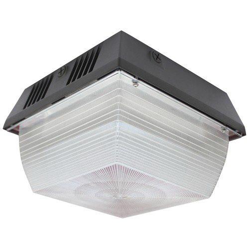 Morris 71462 Ceiling Mount Vandal-Resistant LED Canopy Light Fixture ...
