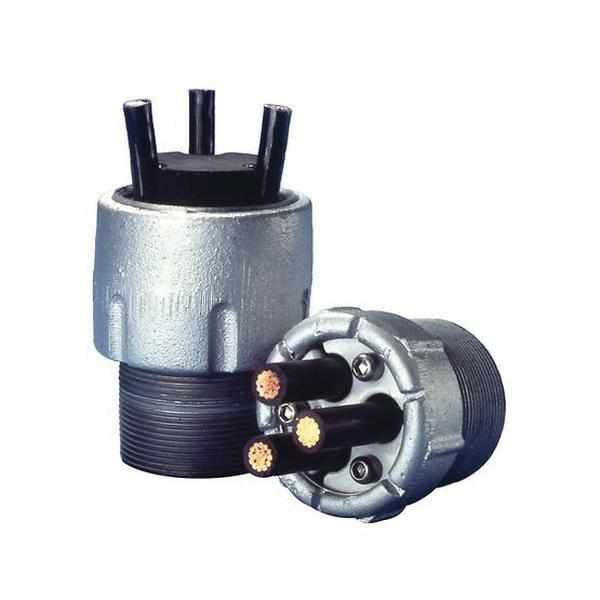 Appleton Csbe 300p 1 Malleable Iron Conduit Sealing