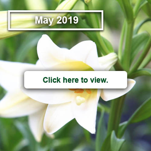 2019_may